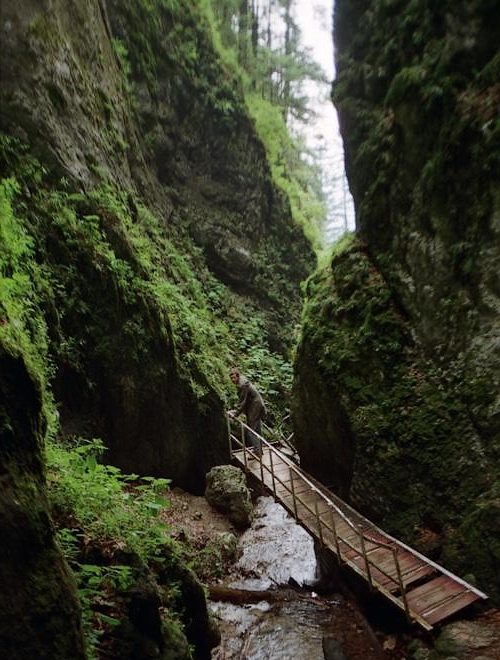 Seven Ladders canyon gorge  Romania Carpathians forests