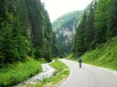 Dambovicioarei Carpathians mountains Romania